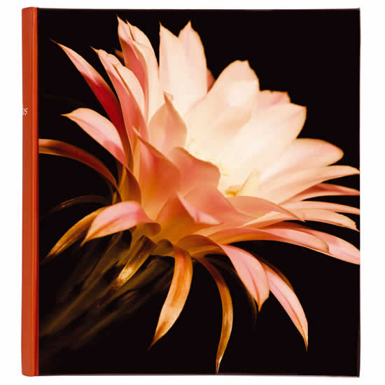 Album traditionnel 400 photos 10x15 Botanic orange