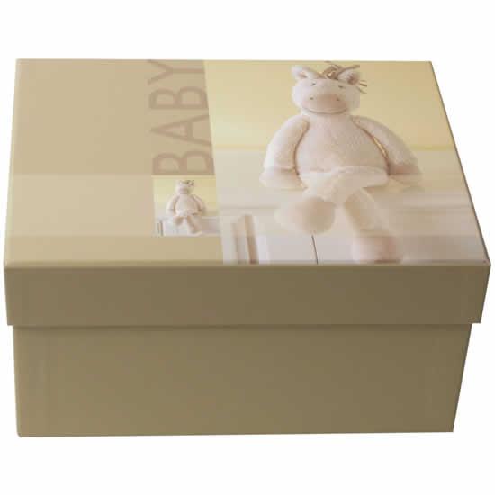 Boîte à photos beige et peluche ours Bobbi