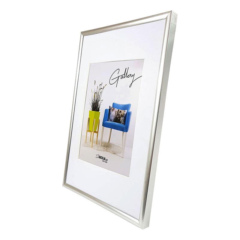Galeria Plastique Cadre Argent 50x60