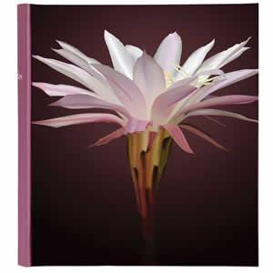 Album traditionnel 400 photos Botanic rose