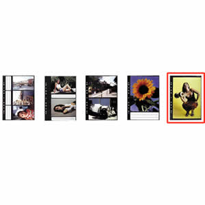 Recharge album photo 21x29,7cm A4