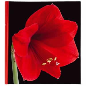 Album traditionnel 400 photos Botanic rouge
