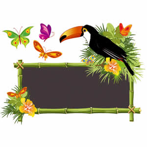 Sticker papillons toucan 25x35 cm Clairefontaine